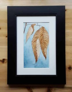 Winter Beech Leaves - Available