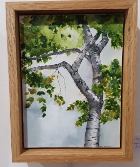 "Kennebunkport Birch - 6""x8"" Original Watercolor"