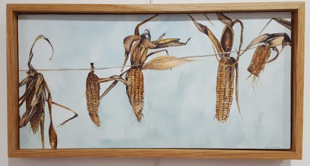 "harvest Koas Corn - 10""x20"" Original Watercolor - SOLD"
