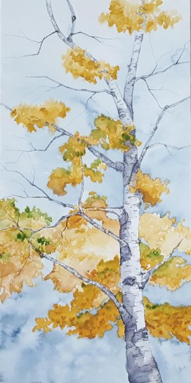 "Braintree Birch - 6""x12"" Original Watercolor"